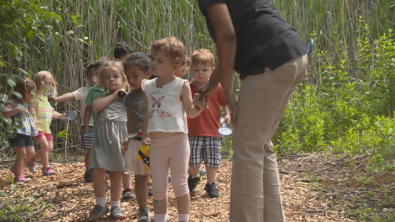 Young kids learn about nature