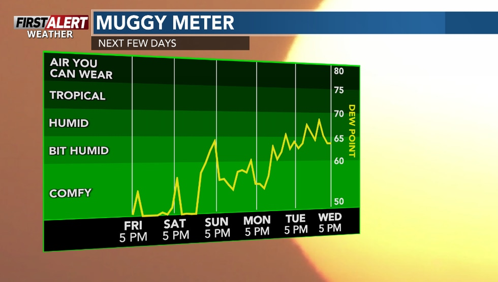 Turning a bit more humid in the week ahead.