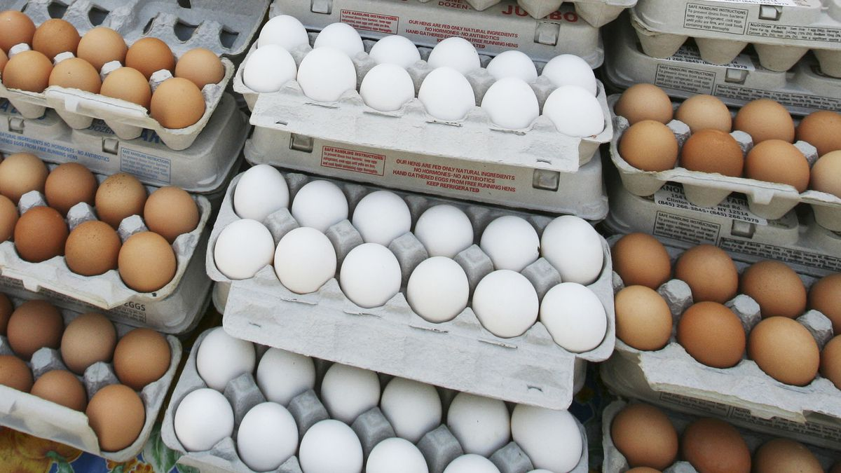 FILE - In this May 14, 2008 file photo, cartons of eggs are displayed for sale in the Union Square green market in New York. The latest U.S. research on eggs won&amp;rsquo;t go over easy for those can&amp;rsquo;t eat breakfast without them.<br />Study participants who ate about 1 &amp;frac12; eggs daily had a slightly higher risk of heart disease than those who ate no eggs. The study showed the more eggs, the greater the risk. The chances of dying early were also elevated. (AP Photo/Mark Lennihan)