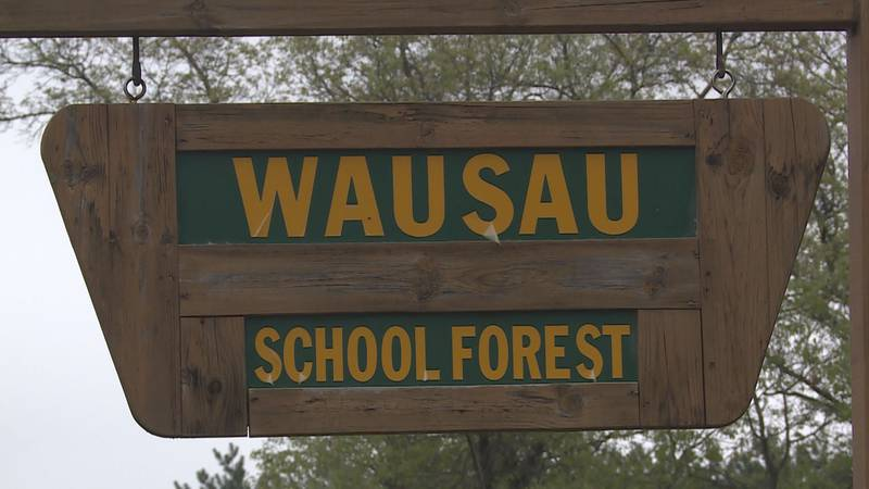 Improvements to the Wausau School Forest are being put off and will take longer than expected.