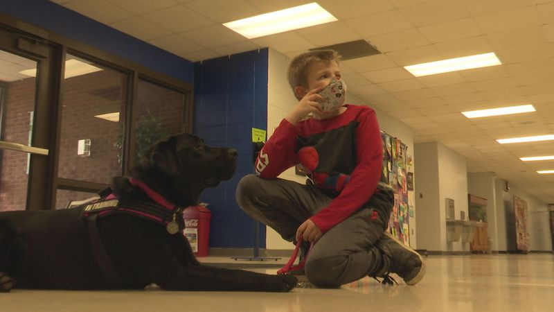 River the dog interacts with a student