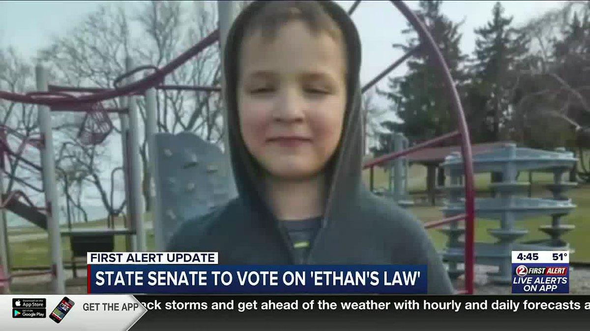 WATCH: Sen. Jacque discusses Ethan's Law