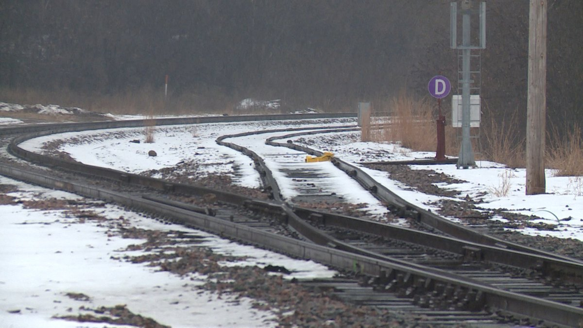 The Chippewa-St. Croix Rail Commission will be forming within the next few weeks according to...