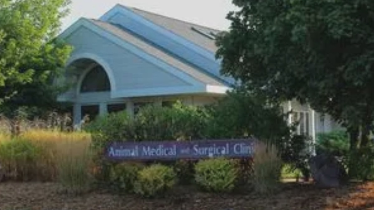 The Animal Medical and Surgical Clinic of Wisconsin Rapids