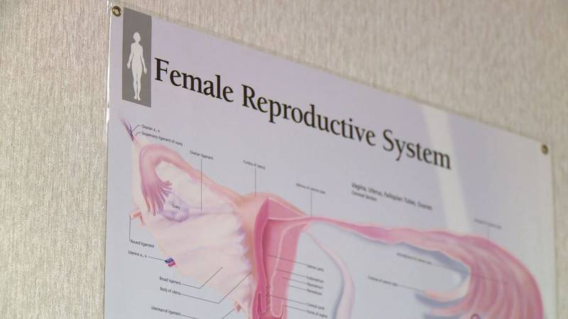 Health experts say there's no link between the COVID-19 vaccines and infertility.