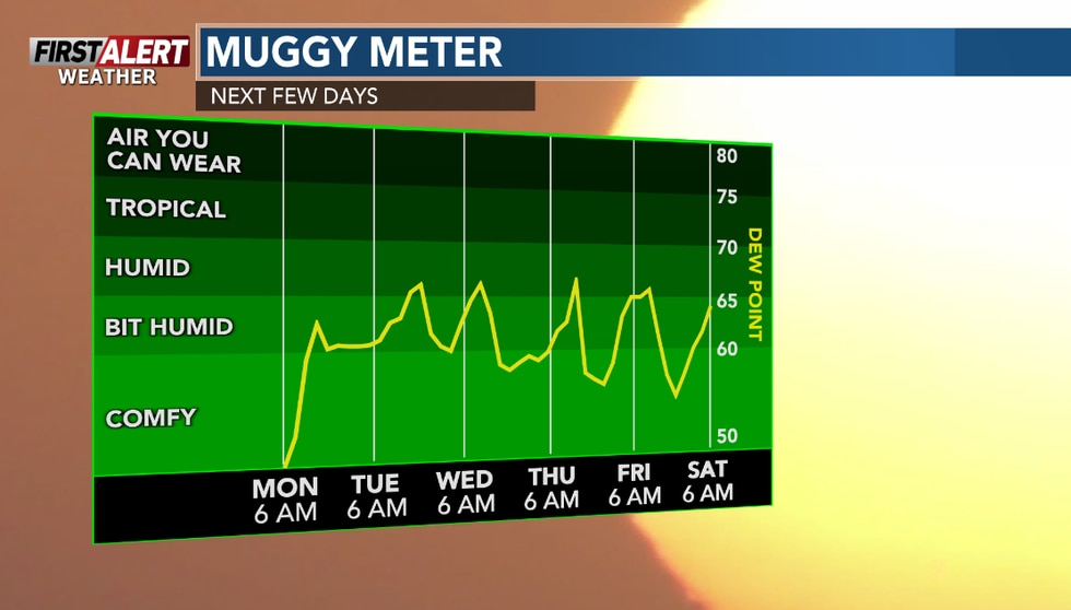 Turing more humid for the week ahead.