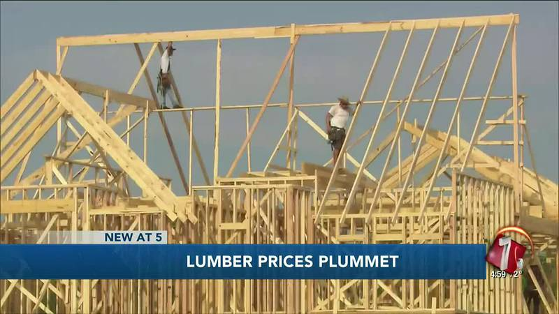 Lumber prices fall rapidly from peak highs in the pandemic