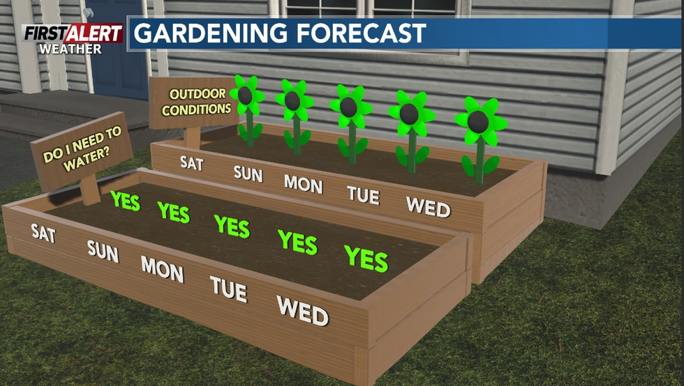 A fine stretch of days ahead to get some work done in the garden.