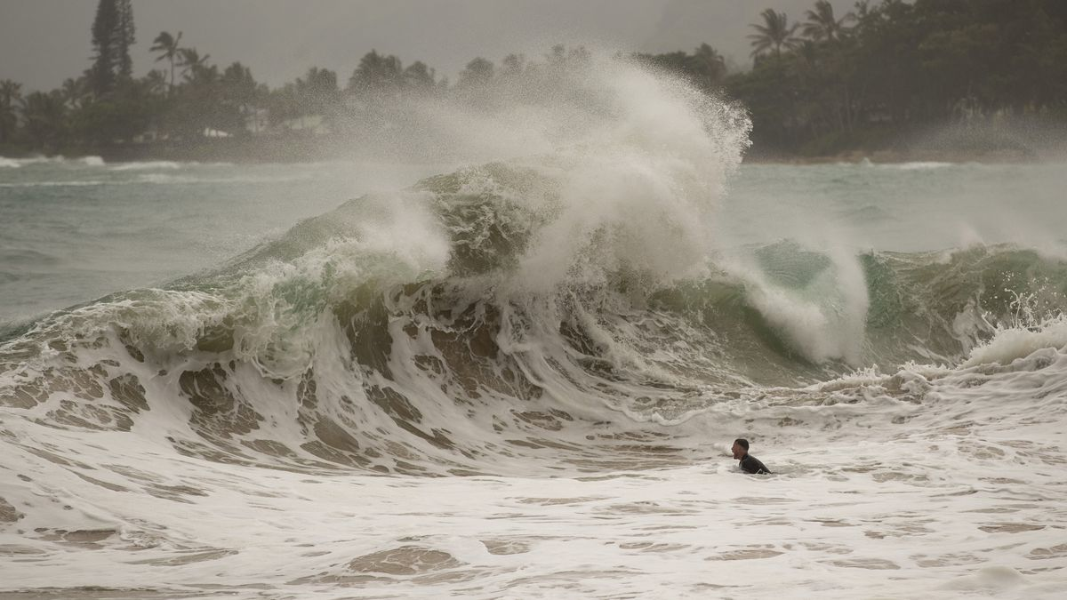 A body surfer prepares to dive under a large wave generated by Hurricane Douglas, at Laie Beach Park, Sunday, July 26, 2020, in Laie, Hawaii.