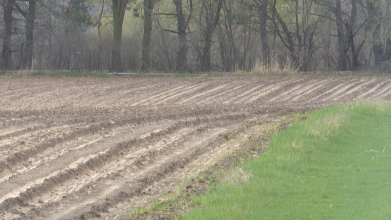 Soil has received much-needed moisture over the last week.