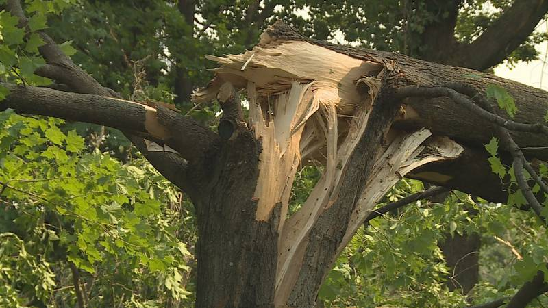 Emergency rescue crews have been working all day Thursday, July 29 in Lincoln County trying to...