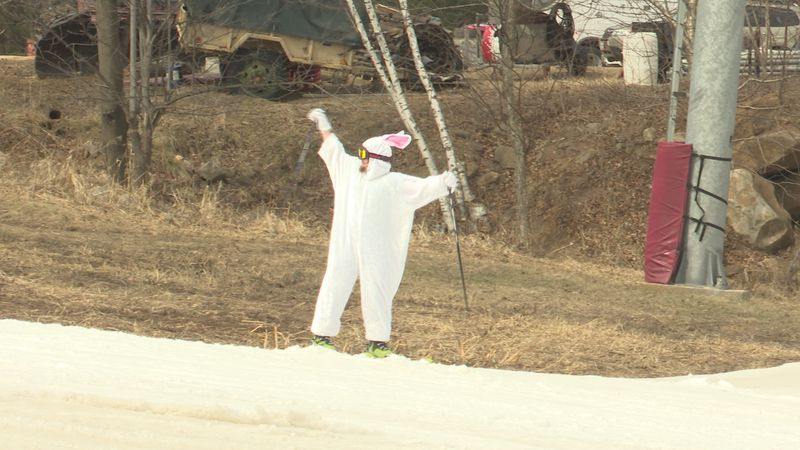 Skier dressed as Easter Bunny on season's last day