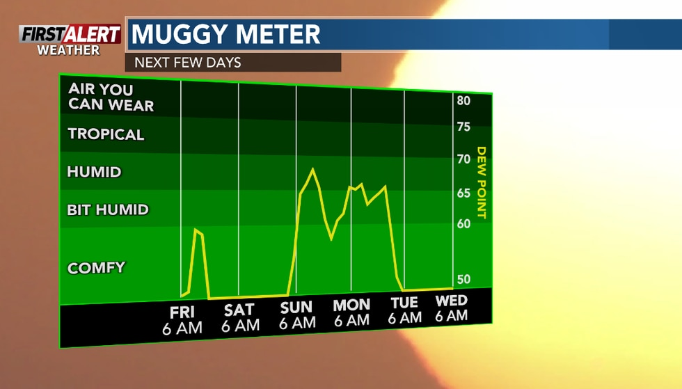 More humid later this weekend into the early part of next week.