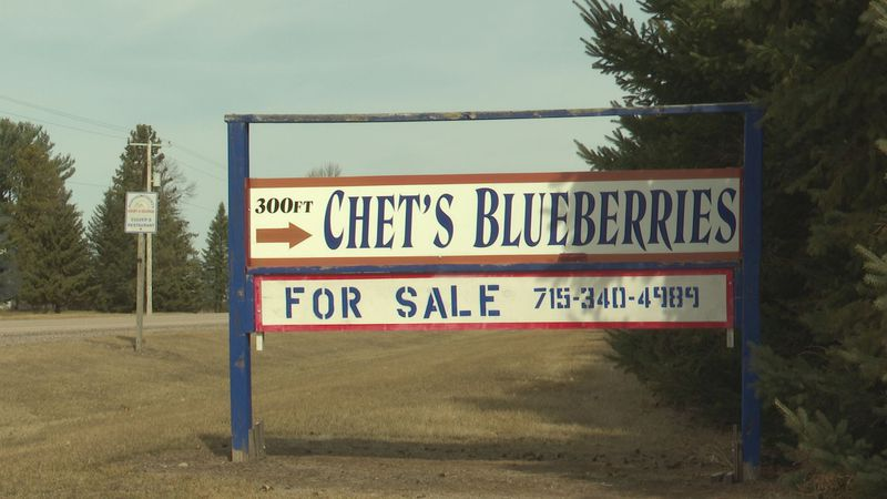 Chet's Blueberries welcomes pickers in 2021