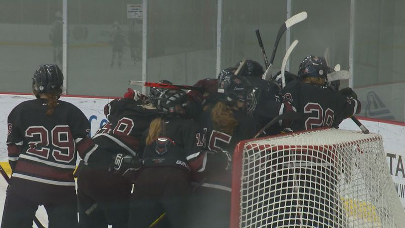 The Central Wisconsin Storm celebrate after beating the Fox Cities Stars 5-1 to advance to the...