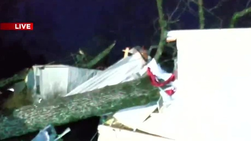 Fallen trees crushed mobile homes in Fultondale, Ala., Monday night.