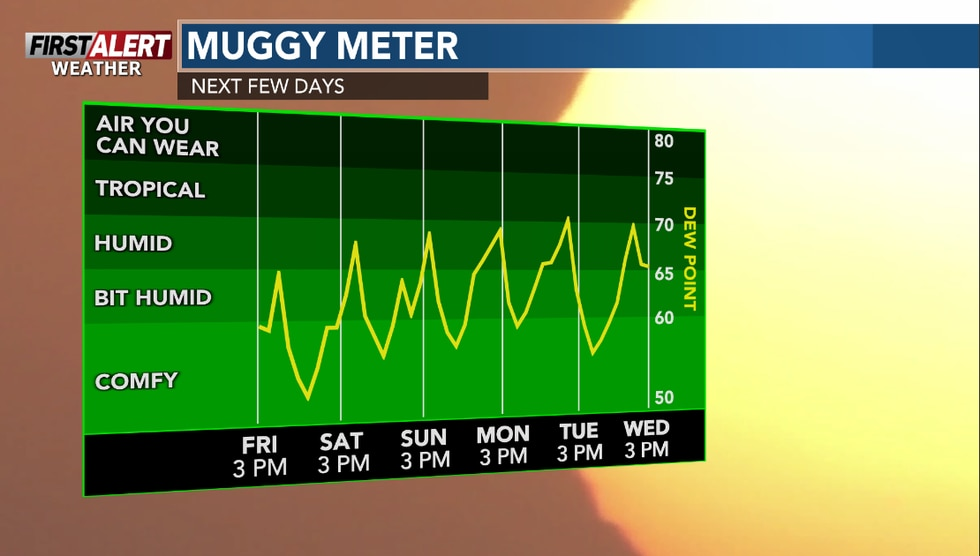 Turning a bit more humid in the next few days.