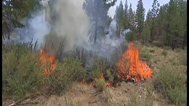 Firefighters battle 83 wildfires across 13 states