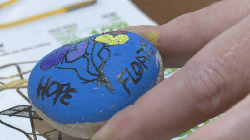 Painted rocks left around town in Stevens Point.