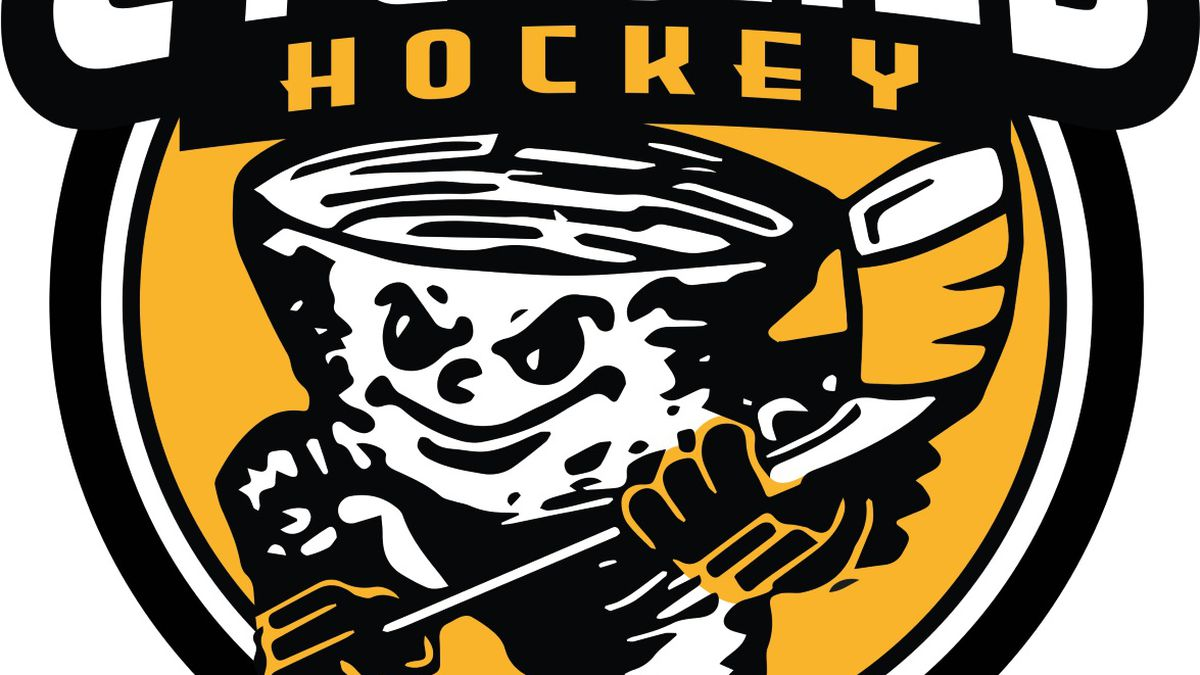 The logo for the newly branded Wausau Cyclones.