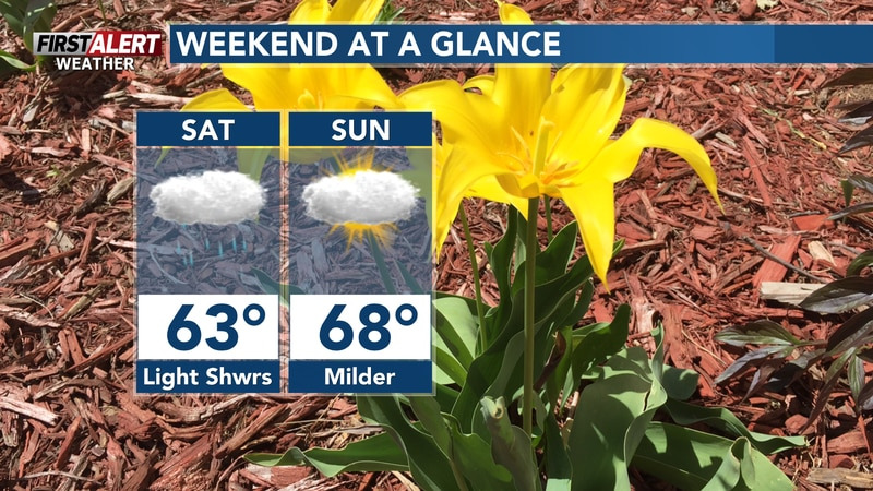 Scattered light showers will move in throughout the day Saturday.