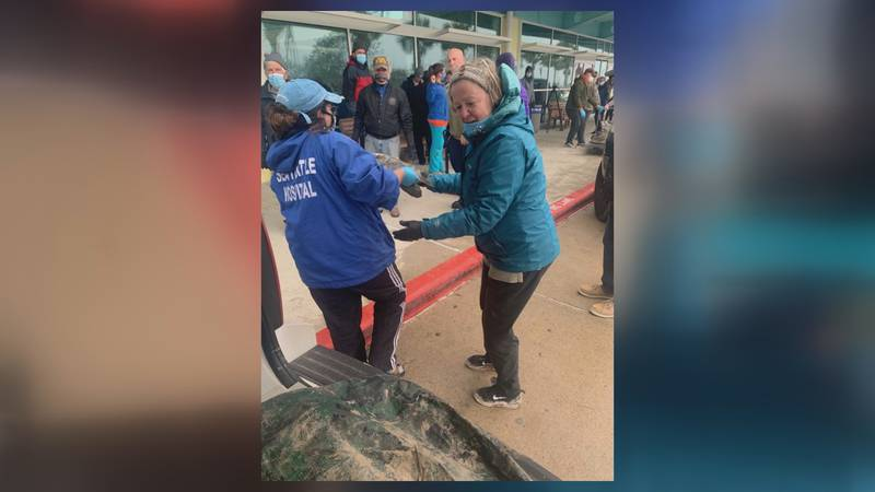 A group of people from Neenah, Wisconsin assisted in rescuing beached turtles while on vacation...