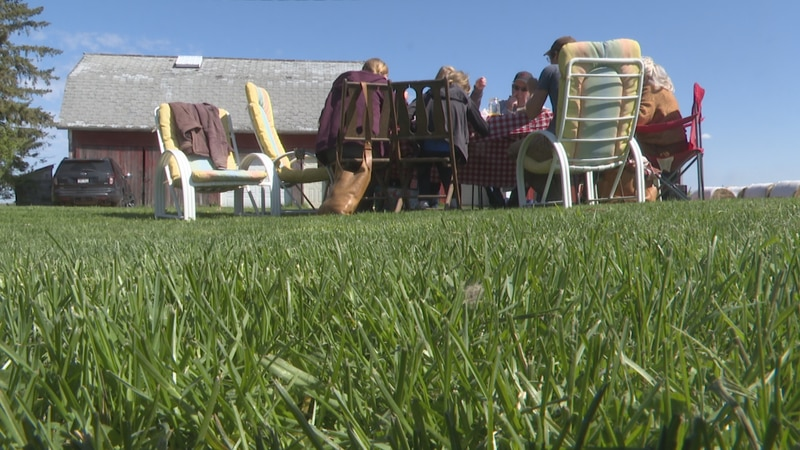 Some families gathered at Lonely Oak Farm for the first time in over a year.