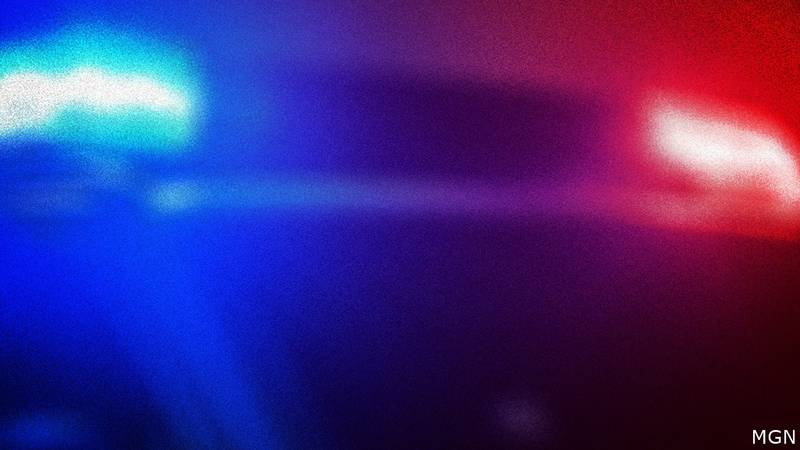 Pit bull attacked a Wisconsin Rapids officer.