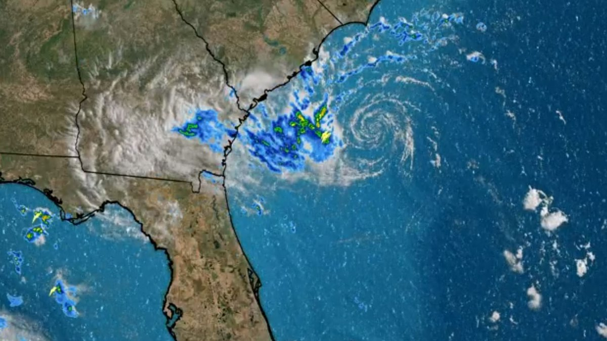 Tropical Storm Danny weakened to a tropical depression hours after it made landfall Monday...