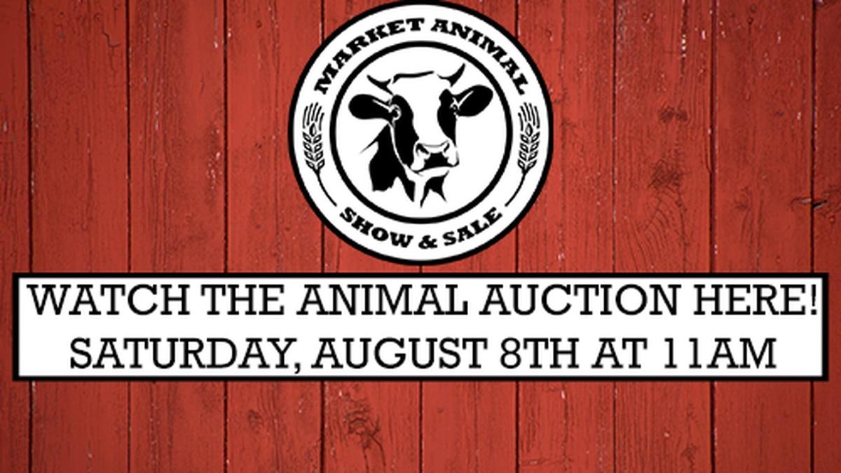 Animal Auction Livestream 2020