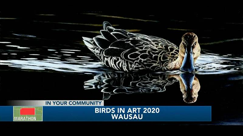 45th annual Birds in Art on display at Leigh Yawkey Woodson Art Museum