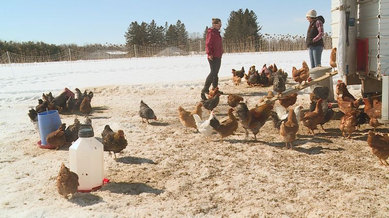 """A new group called """"Wisconsin Women in Conservation"""" (WiWiC) is trying to get more women..."""