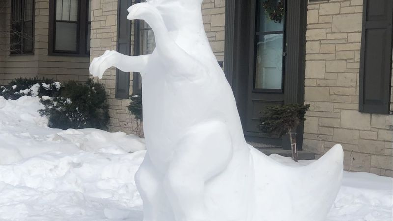 A TRex snow sculpture sits in a yard on N. State Street in Appleton.