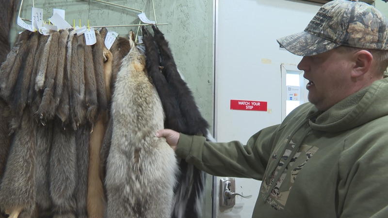 After the highly anticipated wolf hunt of 2021, multiple taxidermists in central Wisconsin say...