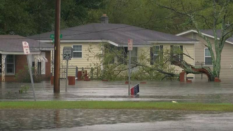 Houses sit in flood water across Lumberton. (Source: WMBF News)