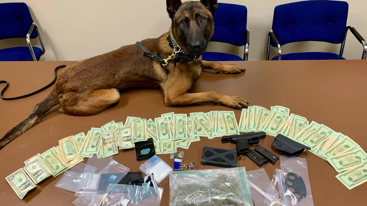 Wood County K9 assists in drug bust. (11/16/2020)